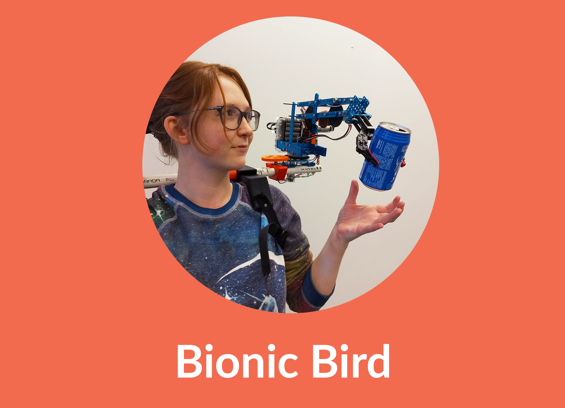 Robot Bird on Shoulder